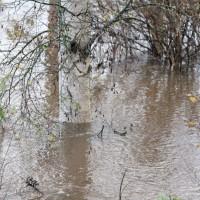 Lokakuun tulva 2012