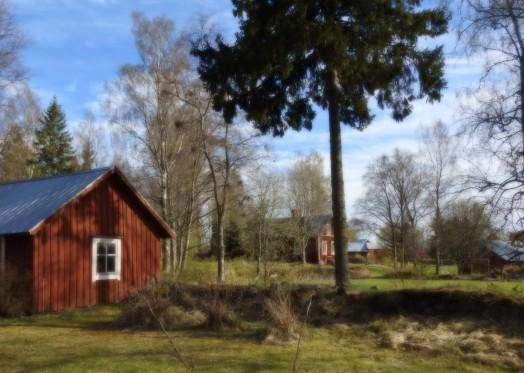 Strömsbacken 26.5.2017